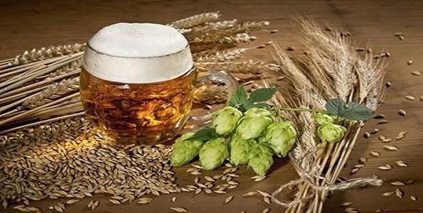 Bierful: club de cerveza artesanal
