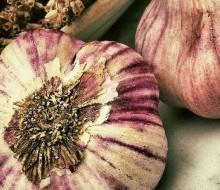 El ajo: la importancia de un condimento