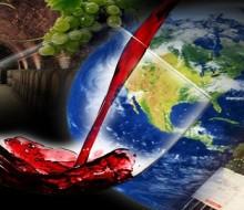 Argentina crece sostenidamente en exportación de vinos